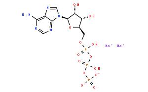 腺苷-5'-三磷酸二钠盐(ATP)