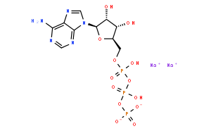 Adenosine 5'-triphosphate disodium salt (ATP