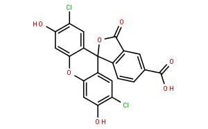 5-(6)-羧基-2',7'-二氯荧光素(混合物)