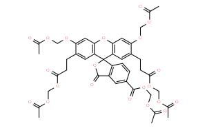BCECF AM (pH熒光探針)