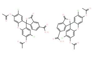 5(6)-羧基-2`,7`-二氯荧光素二乙酸酯