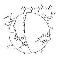ω-Agatoxin IVA