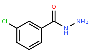 3-氯苯甲酰肼