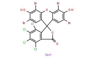 荧光桃红B