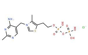 硫胺素焦磷酸(TPP)/辅羧酶