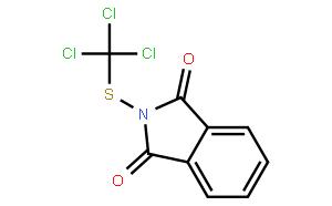 灭菌丹标准溶液