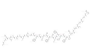 Calcitonin (human)