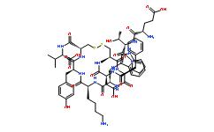 Urotensin II (human)