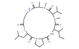 黑僵菌素 B