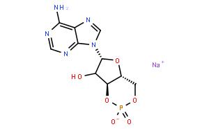 环磷酸腺苷钠盐