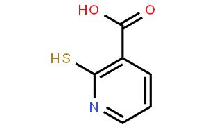 2-巯基吡啶-3-羧酸