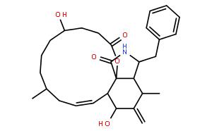二氢细胞松弛素B