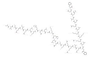 醋酸特立帕肽/重组人甲状旁腺激素(1-34)