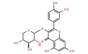 Quercetin 3-O-β-D-xylopyranoside