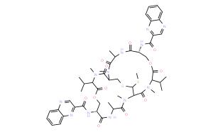 Echinomycin (NSC-13502)