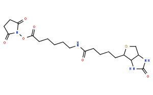 N-琥珀酰亚氨基6-生物素氨己酸