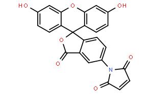 荧光素-5-马来酰亚胺