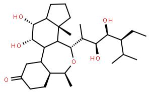 28-表高油菜素内酯