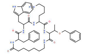 Cyclo-Somatostatin