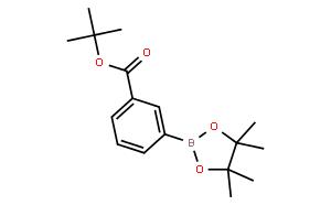 3-tert-Butoxycarbonylphenylboronic acid pinacol ester