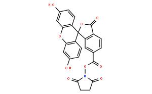 6-羧基荧光素琥珀酰亚胺酯
