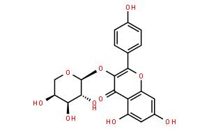 堪非醇 3-O-阿拉伯糖苷