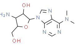氨基核苷嘌呤霉素