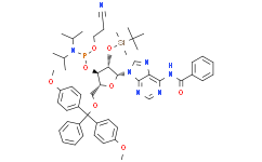 N-苯甲酰基-5'-O-(4,4-二甲氧基三苯甲基)-2'-O-[(叔丁基)二甲基硅基]腺苷-3'-(2-氰基乙基-N,N-二异丙基)亚磷酰胺