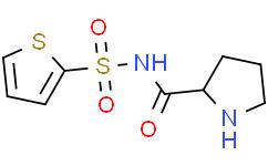 N-(2-噻吩磺酰基)-L-脯氨酰胺