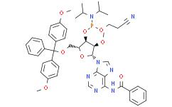 N-苯甲酰基-5'-O-(4,4-二甲氧基三苯甲基)-2'-O-甲基腺苷-3'-(2-氰基乙基-N,N-二异丙基)亚磷酰胺