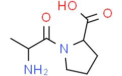 L-丙氨酰基-L-脯氨酸
