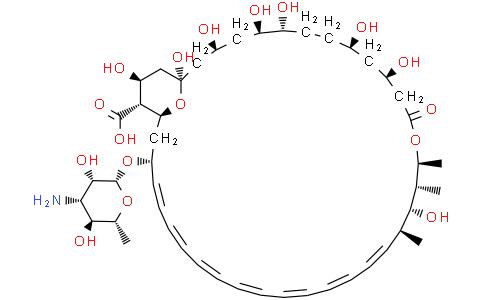 可溶性两性霉素B