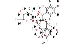 槲皮素-3-O-β-D-葡萄糖基(1-2)-α-L-鼠李糖苷
