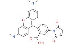 四甲基罗丹明-5-马来酰亚胺(单一化合物)