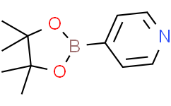 吡啶-4-硼酸频哪醇酯