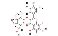 杨梅素 3-O-葡萄糖苷
