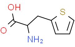 3-(2-噻吩基)-L-丙氨酸