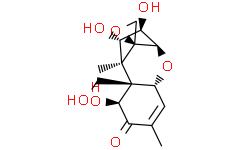 Nivalenol from Fusarium nivale