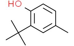 2-叔丁基对甲酚