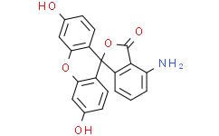 5(6)-氨基荧光素