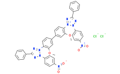 Nitrotetrazolium Blue chloride