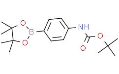 N-(tert-Butoxycarbonyl)-4-(4,4,5,5-tetramethyl-1,3,2-dioxaborolan-2-yl)aniline  N-(叔丁氧羰基)-4-(4,4,5,5-四甲基-1,3,2-二氧杂环戊硼烷-2-基)苯胺
