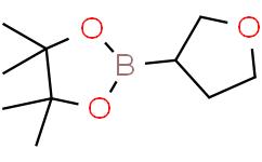4,4,5,5-四甲基-2-(四氢呋喃-3-基)-1,3,2-二氧杂环戊硼烷