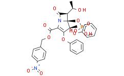 蛋白酶K溶液(20 mg/ml)