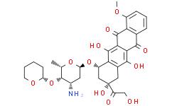Pirarubicin