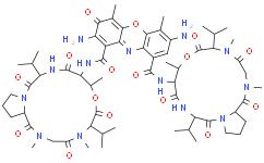 7-Aminoactinomycin D