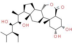 28-高蕓苔素內酯