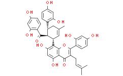 桑黄酮 G