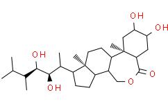 24-表油菜素内酯