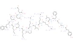 Dynorphin A